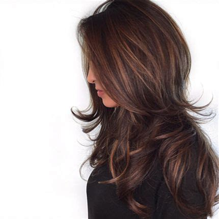 feathered and layered hairstyles on dark brown hair 25 best ideas about brunette hair colors on pinterest