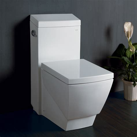 European Toilets That Spray Water Ariel Platinum Tb336m Contemporary European Toilet Ariel