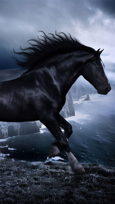 wallpaper for iphone horse horse in the dark iphone wallpaper 640x1136 iphone 5 5s