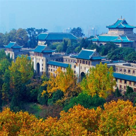 Pepperdine Mba Scholarship China by International Scholarships At Leiden Mladiinfo