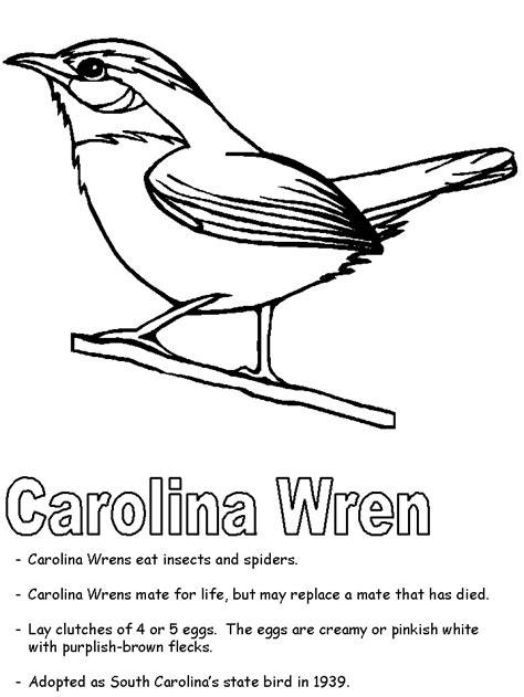 carolina wren coloring page