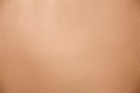 human skin stock image image of pattern texture integument 3359457 royalty free human skin pictures images and stock photos istock
