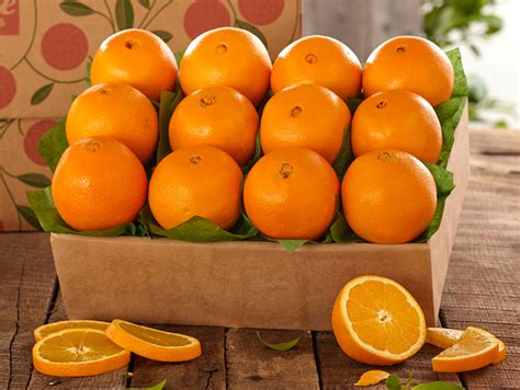 2 Trays of Navel Oranges   Hale Groves