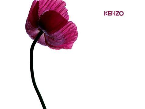 Kenzo Htm 香水壁纸