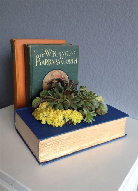 planter for succulents how to create and care for your stunning succulent arrangements