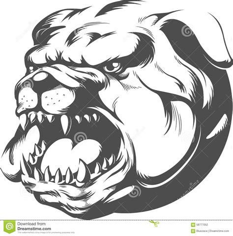 angry bulldog line art pictures to pin on pinterest
