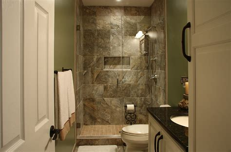 Basement Bathroom Traditional Basement Dc Metro By Basement Bathroom Design