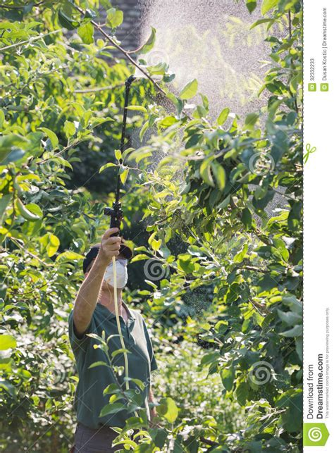 pesticides for fruit trees spraying pesticide on fruit trees stock photos image
