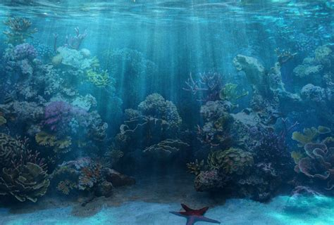 aquarium design wallpaper 50 best aquarium backgrounds to download print free
