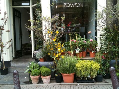 best plant store in amsterdam 31 best images about amsterdam flower shop on shops greenhouses and flower shops