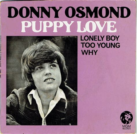 donny osmond puppy 45cat donny osmond puppy mgm australia