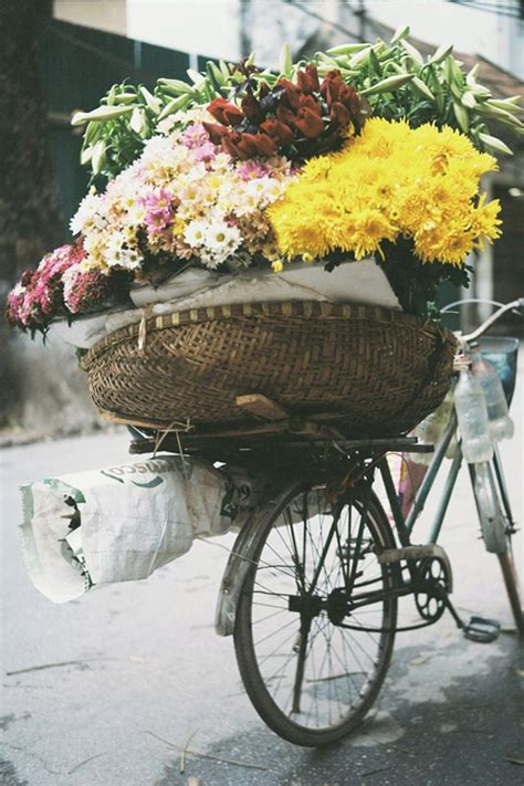 Tas Wanita Fashion Guess Flower Cutting With 1826 16 best bicicletas floridas images on flower arrangements beautiful flowers and