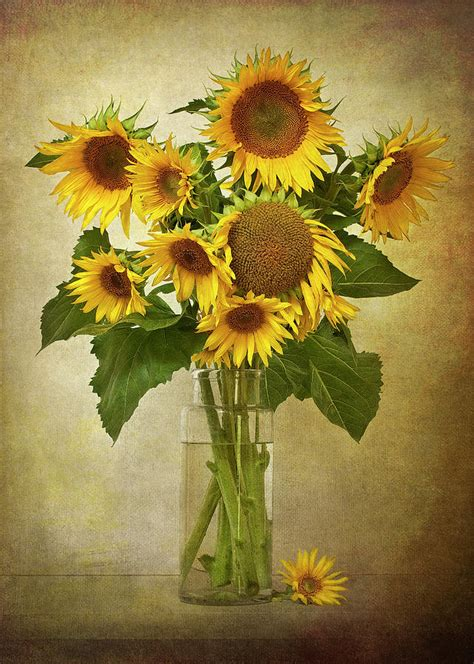 Sunflowers In Vase by Sunflowers In Vase By 169 Leslie Photographic