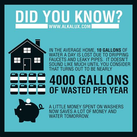 in the average home 10 gallons of water a day is lost due