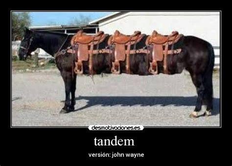 imagenes memes vaqueros im 225 genes y carteles de vaqueros pag 12 desmotivaciones