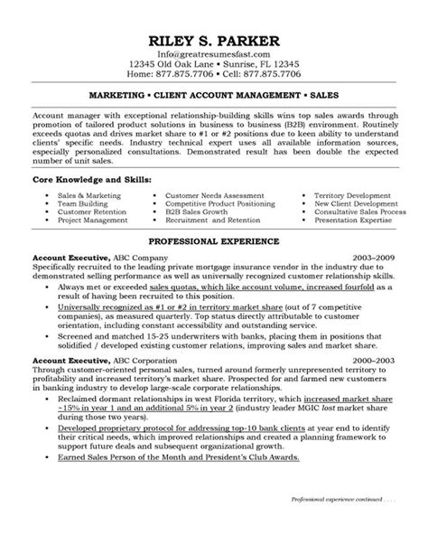 executive resume format exles marketing account executive resume
