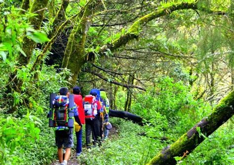 Naik Gunung 6 perasaan yang akan kamu alami ketika mendaki gunung