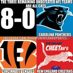 Panthers Suck Meme - nfl funnies on pinterest nfl memes football humor and