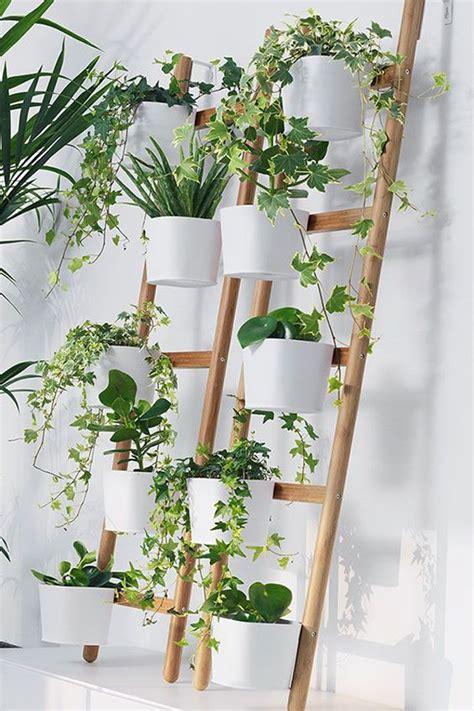 diy ikea ladder plant setting  indoor homemydesign