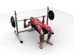 bench press 180 boost your bench press gains