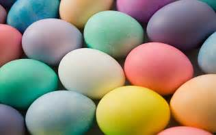 where to buy easter eggs where to buy the best easter eggs in canberra outincanberra