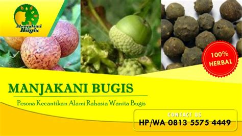 Agen Pil Aborsi Bandung Hp Wa 0813 5575 4449 Agen Jamu Pil Manjakani Bugis Makassar