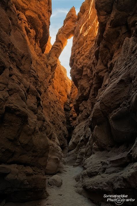 anza borrego henderson canyon the slot canyons of anza borrego desert state park news
