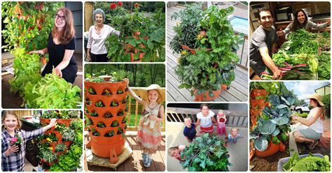 tower garden - Garden Tower Project Giveaway