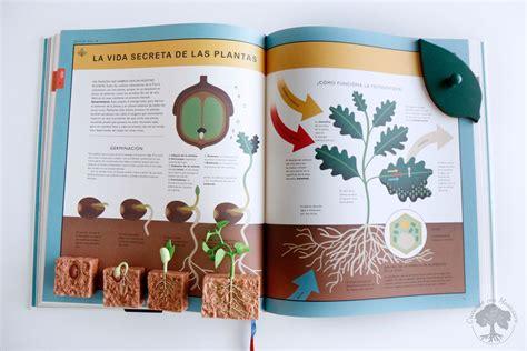 libro el curioso rbol prodigioso libro rese 241 a el curioso 225 rbol prodigioso mundo natural creciendo con montessori