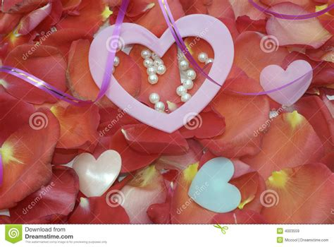 petals for valentines day valentines day petals www imgkid the image kid has it