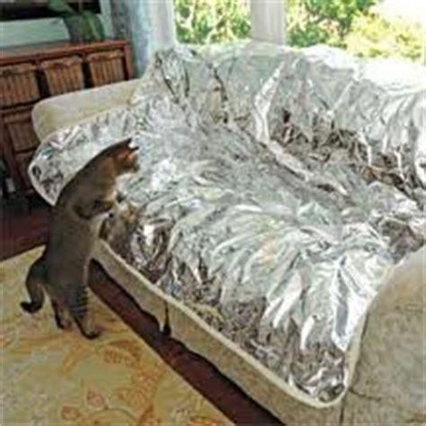 dog sofa deterrent com pet repeller furniture pad sofa couch mat