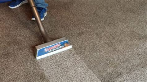 Minneapolis Rug Cleaning by Carpet Cleaners Minneapolis 28 Images Carpet Cleaning