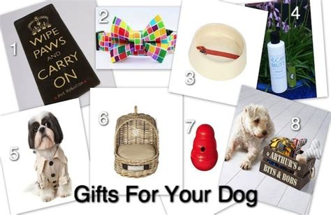 8 christmas gifts for your dog