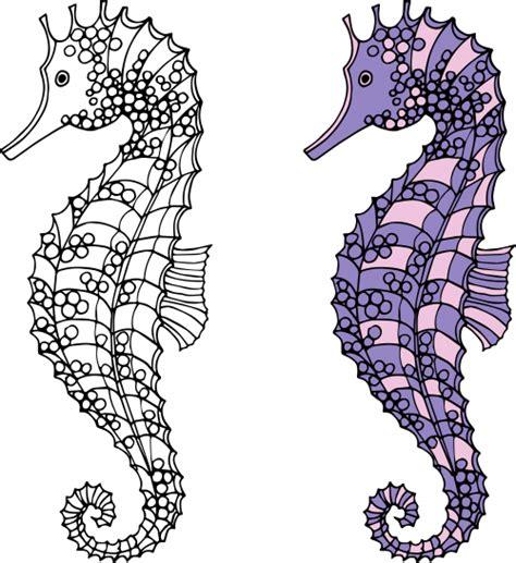 free coloring pages seahorses seahorses coloring page kidspressmagazine