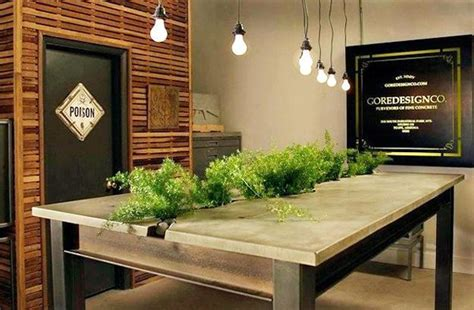 Dining Table Plants Fern Decor For Room Windows Facing And Interiors Lacking