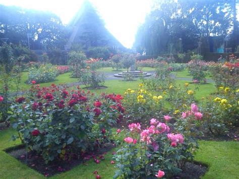 National Botanic Garden Roses Picture Of National Botanic Gardens Dublin Tripadvisor