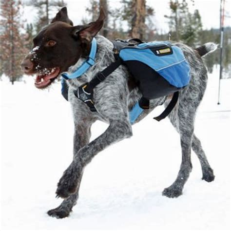 backpack for dogs to wear backpacks ruffdogstuff