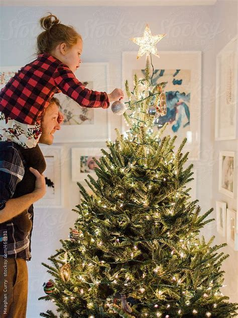 288 best images about trimming the tree on pinterest