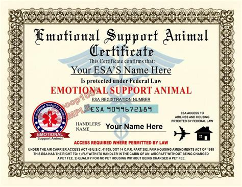 Emotional Support Animal Esa Certificate 8 5 By 11 Inches Custom Usa Made Ebay Emotional Support Animal Id Card Template