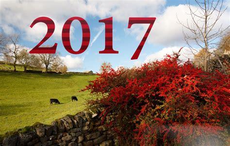 happy  year  hd wallpapers weneedfun
