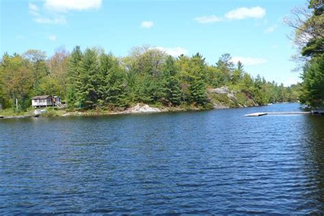 cottage for rent on six mile lake ontario