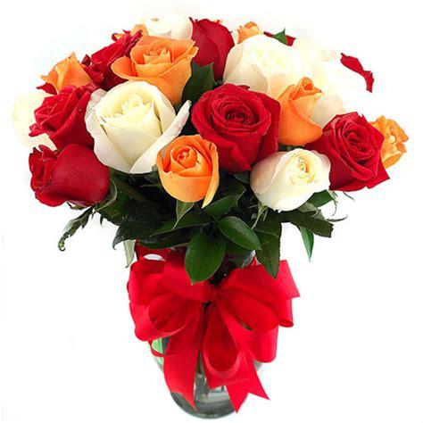 imagenes todas rojas im 225 genes de rosas rojas im 225 genes
