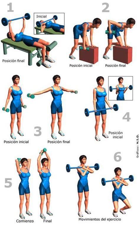 fitness guia holistica para principiantes comprender como alcanzar una perdida de peso duradera y un bienestar fisico completo edition books las 25 mejores ideas sobre brazos fuertes en y