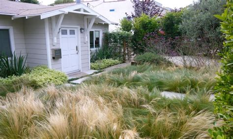 No Mow Front Yard Landscaping No Lawn Front Yard M And M Landscaping