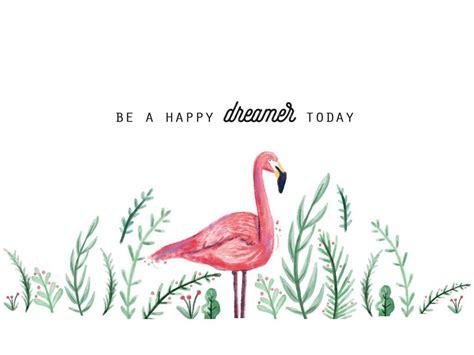 flamingo macbook wallpaper tech tuesday summer dreams wallpapers tuesday