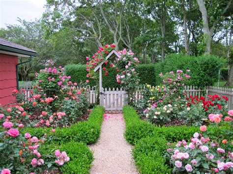 how to design a cottage garden cottage garden design with roses wilson garden