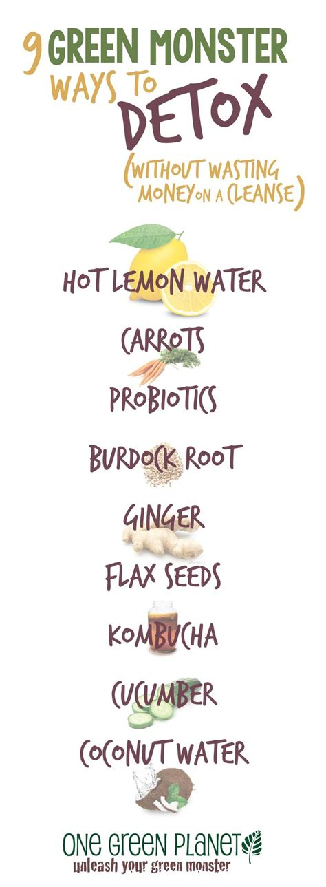 Should I Detox Before Going Vegan by Best 25 One Day Cleanse Ideas On