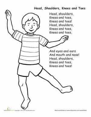 head shoulders knees and toes worksheet education com