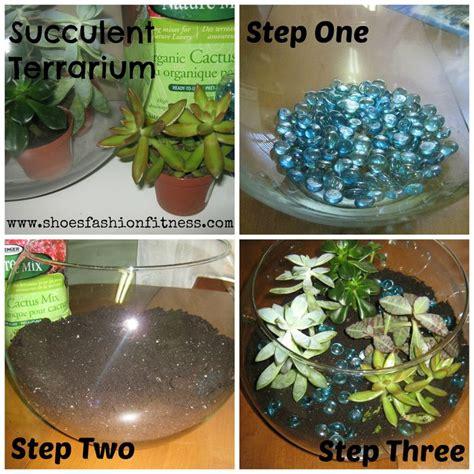 diy succulent diy succulent terrarium crafts pinterest