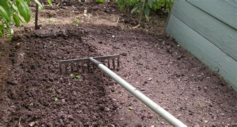 seed bed how to make a seedbed
